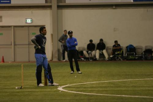 Cricket in Iceland-2015